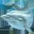 Игровой автомат на деньги Дельфины (Dolphin's Pearl)